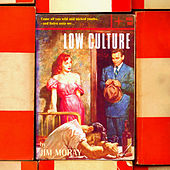 Low Culture by Jim Moray