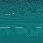 Awareness by Palle Mikkelborg