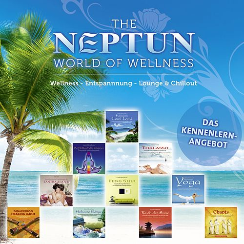 The NEPTUN World of Wellness by Various Artists