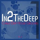 In2 the Deep - Chilled Deep House Grooves 2 de Various Artists