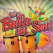 Así Se Baila un Son de Various Artists