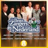De Beste Zangers van Nederland Seizoen 8 de Various Artists