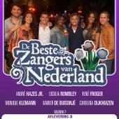 De Beste Zangers van Nederland Seizoen 7 (Aflevering 3) by Various Artists