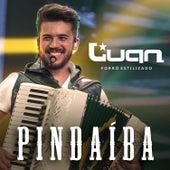 Pindaíba (Ao Vivo) - Single von Luan Forró Estilizado