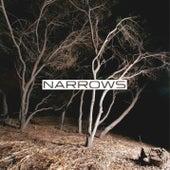 Narrows by Narrows