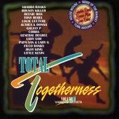 Total Togetherness Vol. 4 von Various Artists