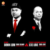 Down Low 2016 / XTC Love by Various Artists