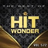 Hit Wonder: The Best Of, Vol. 572 de Various Artists