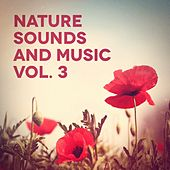 Nature Sounds and Music, Vol. 3 de Various Artists