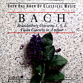 Bach: Brandenburg Concertos 1,5,6 by Various Artists