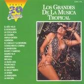 Serie 20 Exitos - Los Grandes De La Musica Tropical by Grandes Del Mer