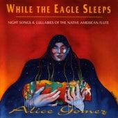 While The Eagle Sleeps von Alice Gomez