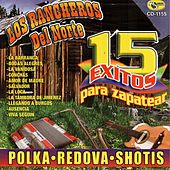 15 Exitos Para Zapatear by Various Artists