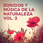 Sonidos y Música de la Naturaleza, Vol. 3 de Various Artists