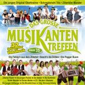 Das große Musikantentreffen - Folge 35 by Various Artists