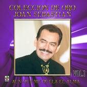 Coleccion de Oro, Vol.1: Aunque Me Duela el Alma by Joan Sebastian