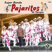 Super Banda Los Pajaritos De Tacupa by Los Pajaritos De Tacupa