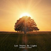 Let There Be Light by Savannah LiveOak