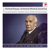 Richard Strauss: Orchestral Works and Concertos de Various Artists