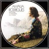 Folclore À Guitarra E À Viola von Amalia Rodrigues