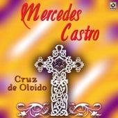 Cruz De Olvido by Mercedes Castro