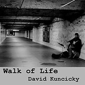 Walk of Life de David Kuncicky