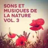 Sons et musiques de la nature, Vol. 3 de Various Artists