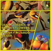 Broken Flowers (Franky Rizardo Remix) de Danny L Harle