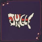 The 1969 Demo Album by Jungle