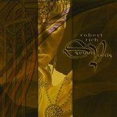 Seven Veils by Robert Rich