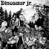 Dinosaur by Dinosaur Jr.