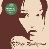 Deep Rendevouz, Vol. 12 by Various Artists