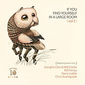 If You Find Yourself In A Large Room, Vol. 1 - Single by Various Artists