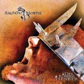 Des Königs Henker von Saltatio Mortis
