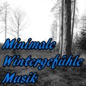 Minimale Wintergefühle Musik by Various Artists