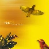 Birds by Keco Brandão