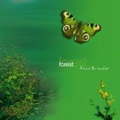 Forest by Keco Brandão