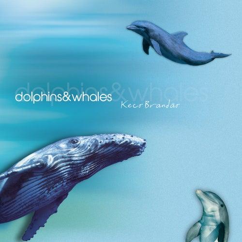 Dolphins & Whales by Keco Brandão