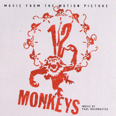 12 Monkeys by Various Artists