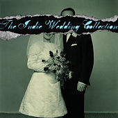 The Indie Wedding String Collection de Vitamin String Quartet