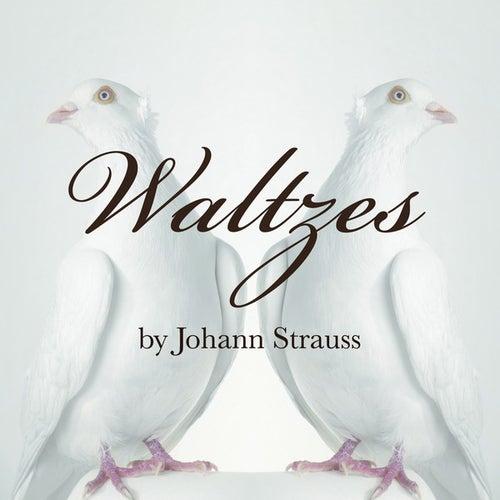Waltzes by Johann Strauss by 101 Strings Orchestra