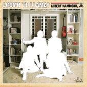 Como Te Llama? by Albert Hammond Jr.