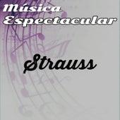 Música Espectacular, Strauss by Werner Müller