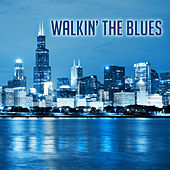 Walkin' the Blues von Various Artists