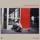 Svprasensible Destination de Various Artists