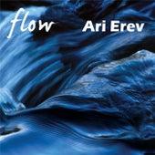 Flow by Ari Erev