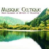 Musique Celtique - Harpe Irlandaise de Détente et Relaxation by Celtic Harp Soundscapes
