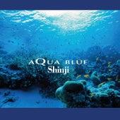 Aqua Blue by Shinji Ishihara