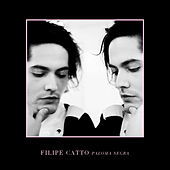 Paloma Negra de Filipe Catto