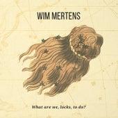 What are we, locks, to do? von Wim Mertens